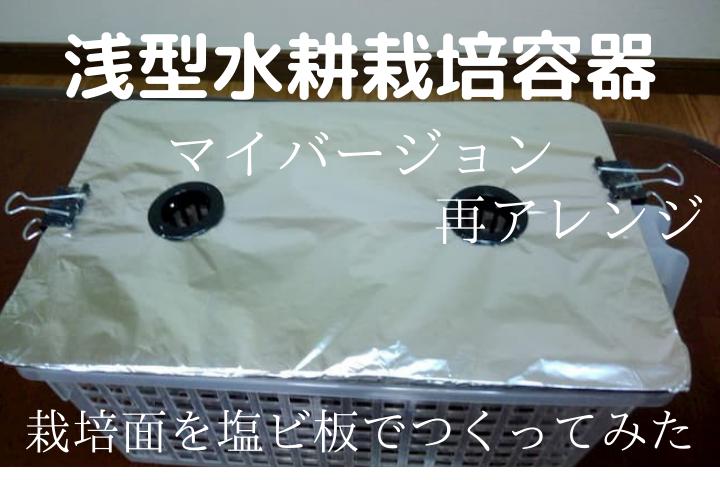 浅型水耕栽培容器(マイバージョン)再アレンジ