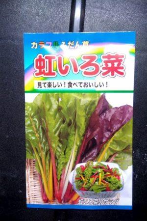 カラフルふだん草、虹いろ菜のタネ袋