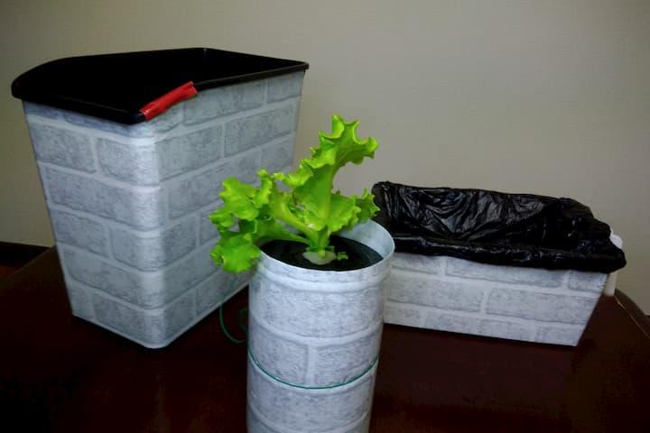 見た目をオシャレにした自作水耕栽培容器